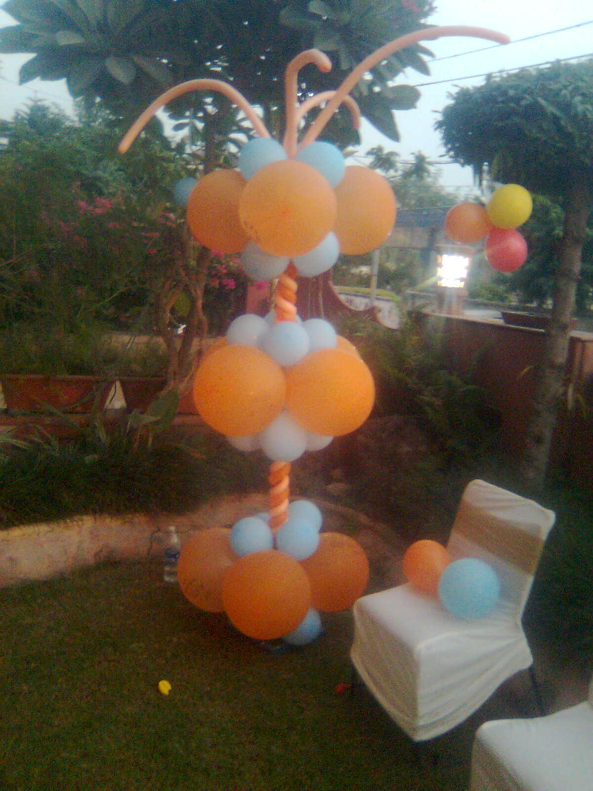 91 9549999345 Party planners party decorations Jaipur Noida